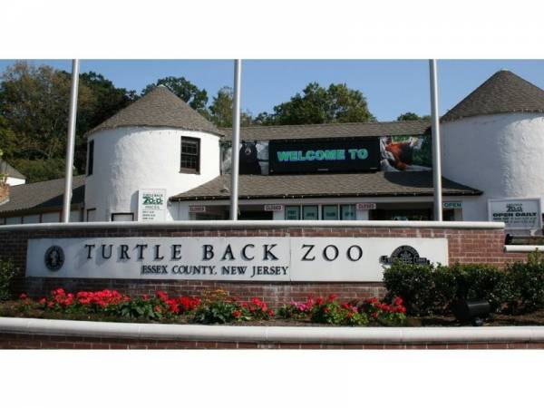 westorange_turtlebackzoo_patch